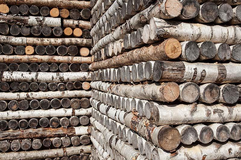 3D Ağaç Evler Duvar Kağıdı | Köşeli Ağaç Tv Ünitesi Duvar Kağıtları