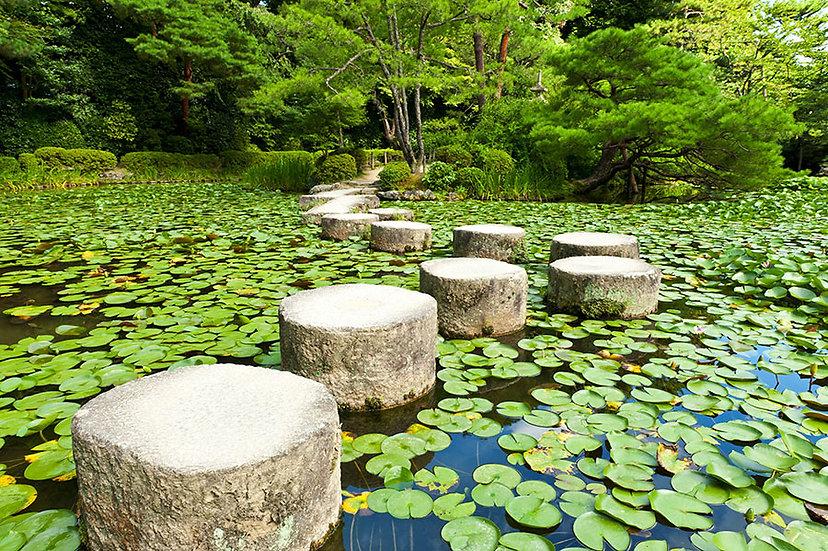 Japon Bahçesi Duvar Kağıtları | 3D Göl Üzerinde Taş Yol Duvar Kağıtları