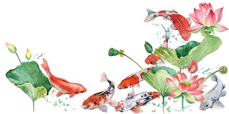 3 Boyutlu Duvar Kağıtları | Muhteşem Sualtı Çiçek Desenleri Duvar Kağıtları