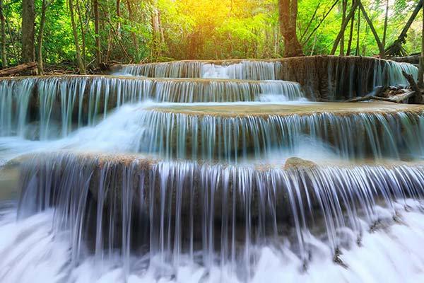 3D Nehir Kenarında Yeşil Ağaç Duvar Kağıdı | Full HD Şelale Akışı Duvar Kağıdı