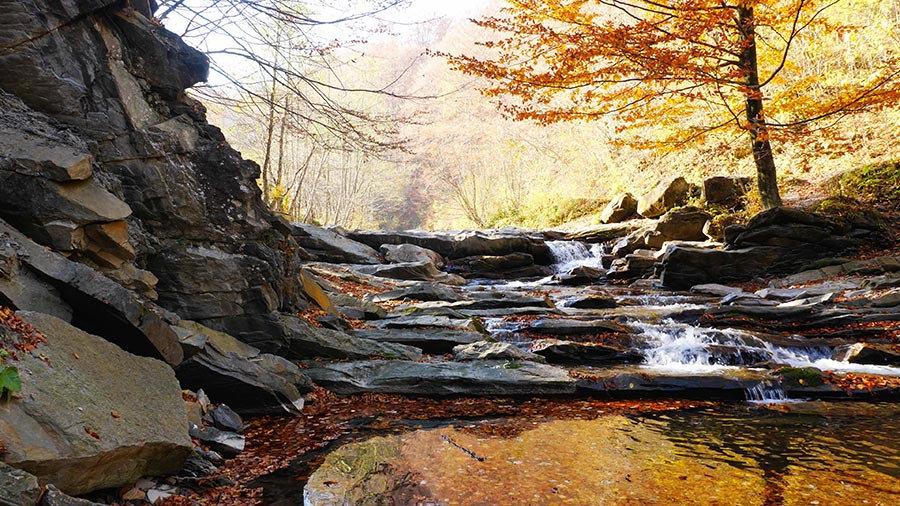 3 Boyutlu Nehir Duvar Kağıtları | 3D Doğal Sonbahar Duvar Kağıtları