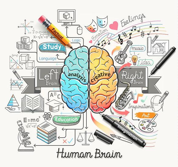 3 Boyutlu İtalya Kağıtları | Dokulu Beyin Kurdu Eğitim Duvar Kağıtları