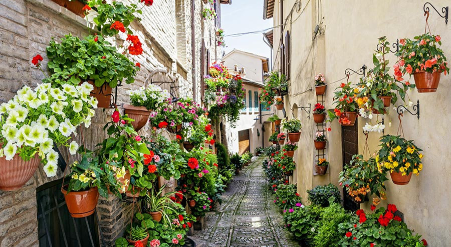 3 Boyutlu Bosna Hersek Kağıtları | HD Çiçekli Dar Sokak Duvar Kağıtları