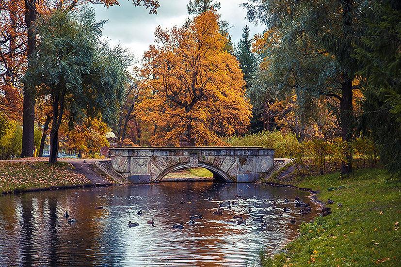 3D Sonbahar Ağaçları Duvar Kağıdı | Taş Köprü Duvar Posteri