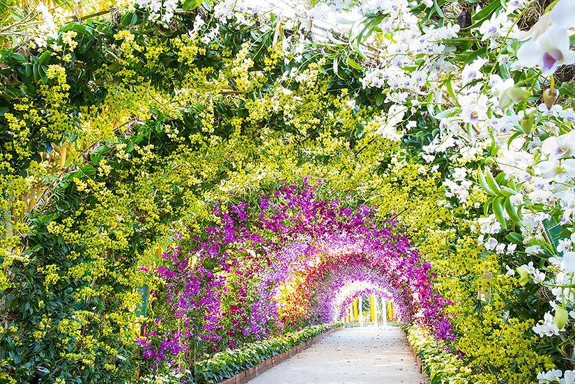 3 Boyutlu Çiçek Bahçesi Tünel Duvar Kağıdı