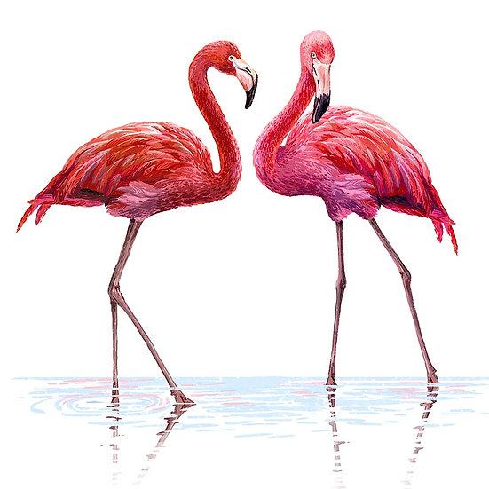 3D Flamingo Duvar Kağıtları | Dokulu Su Kuşu Duvar Kağıtları