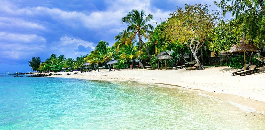 3 Boyutlu Duvar Kağıtları | Full HD Palmiye Deniz Sahil Duvar Kağıtları