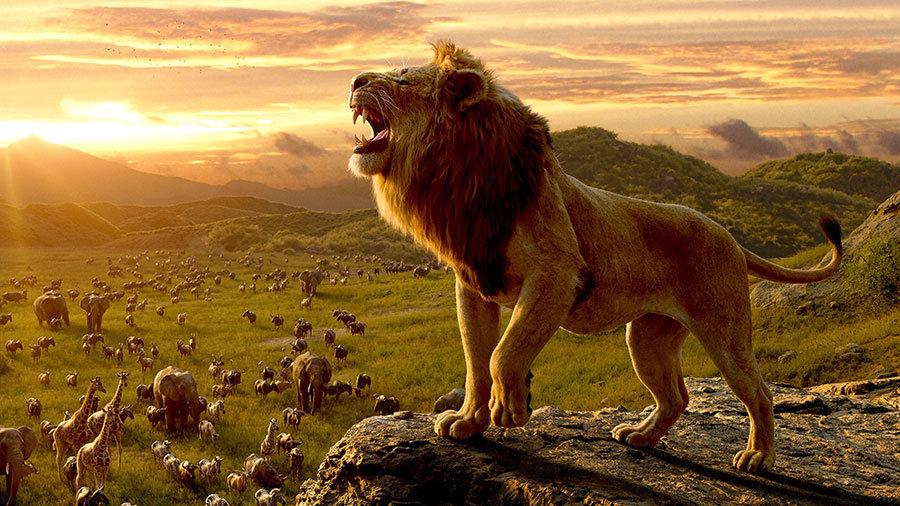 Aslan HD Duvar Kağıtları   3 Boyutlu Lion Modelleri Duvar Kağıtları