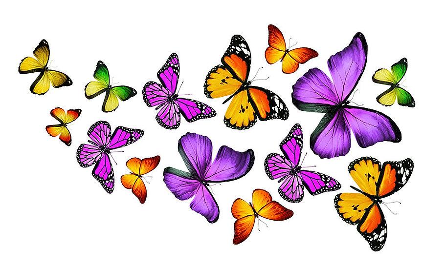 Full HD Görselli Duvar Kağıtları | 3D Renkli Kelebekler Ailesi Duvar Kağıtları