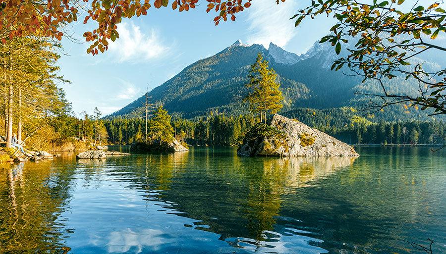 Orman Manzaralı Göl Çınar Ağaçları Duvar Kağıtları