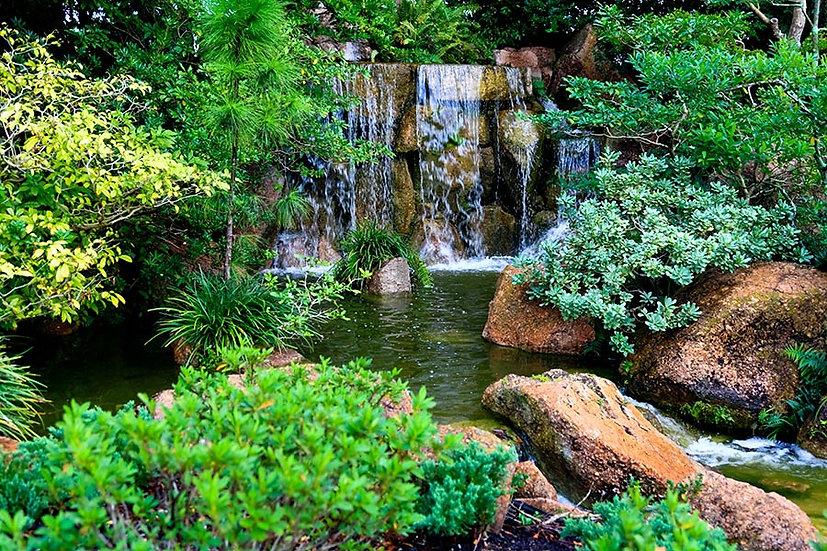 Full HD Japon Bahçesi Duvar Kağıtları | 3d Güney Florida Duvar Kağıtları