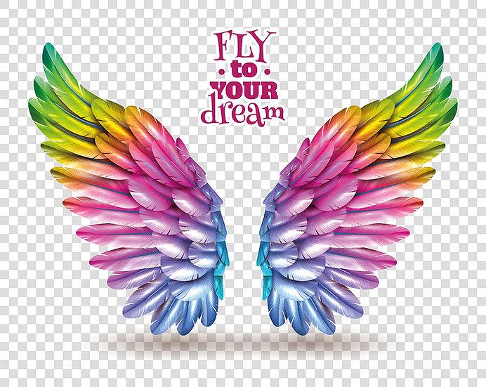 Angel Wings HD Duvar Kağıtları | 3D Renkli Kanat Duvar Kağıtları | İstanbul