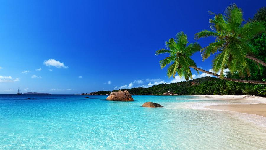 HD Tatil Adası Duvar Kağıtları | En İyi Palmiye Duvar Kağıtları | Duvar34.com