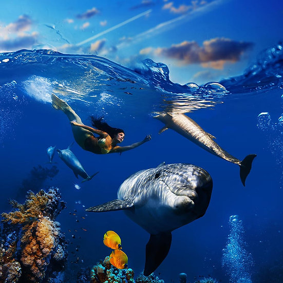 3 Boyutlu Sualtı Balık Duvar Kağıtları   Efsane Yunus Denizkızı Duvar Kağıtları