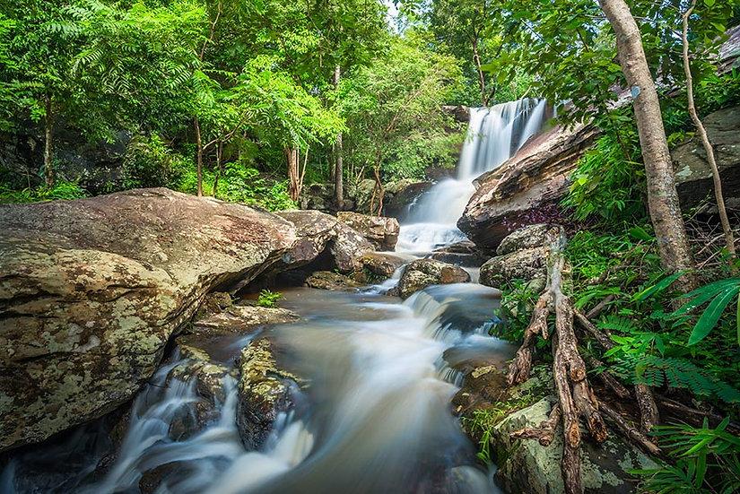 Tatil Şelalesi HD Duvar Kağıtları | Orman Şelalesi Manzara Duvar Kağıtları