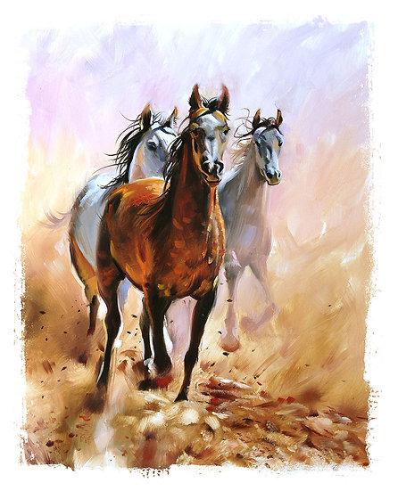 Atlar Tablo Duvar Kağıtları
