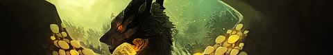 CollectorBanner.png