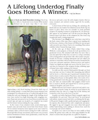 A LifeLong Underdog article