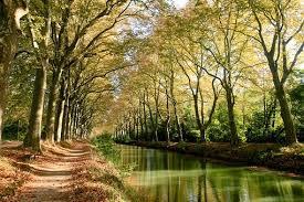 Toulouse appartement Toulousain - Canal du midi
