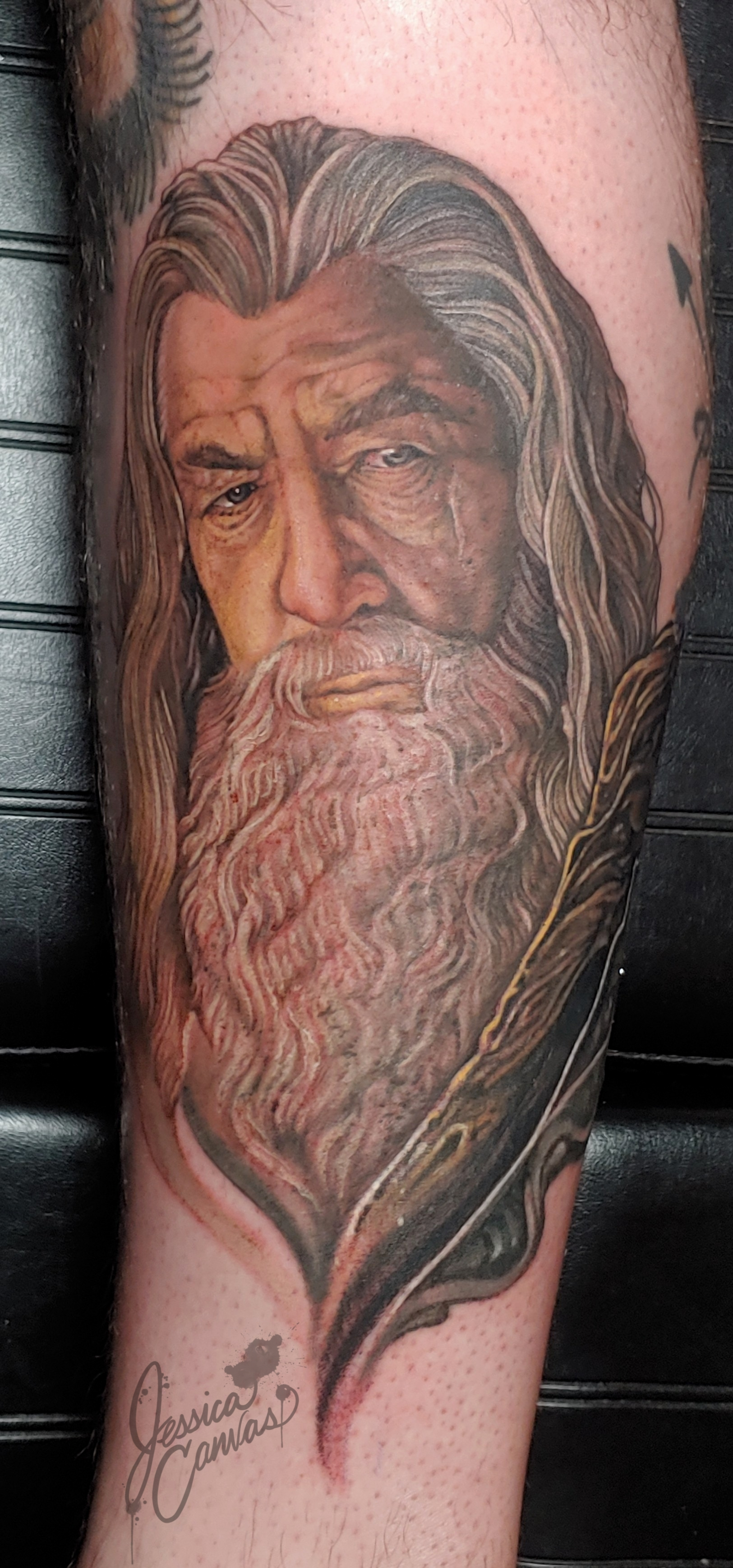 Gandalf Lord of the Rings Portrait