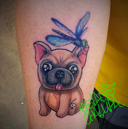 Dog and dragonfly_ Colored cute kawaii c