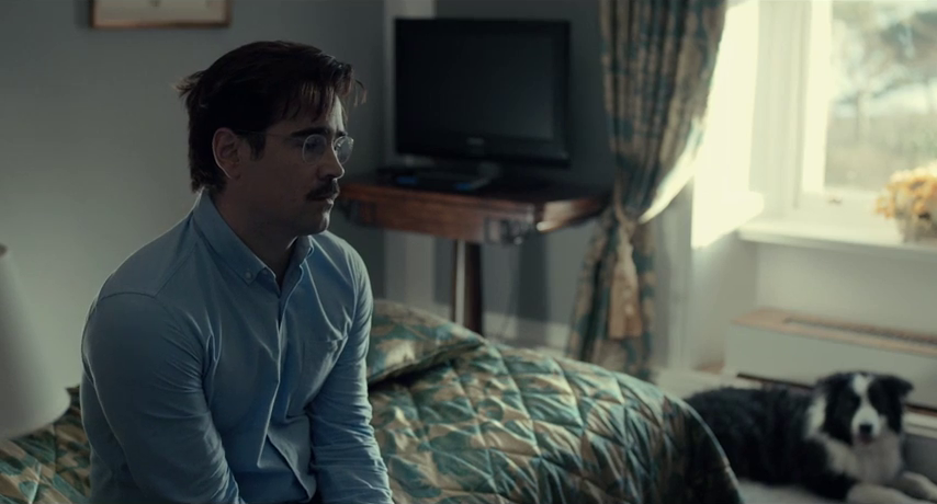 Colin Farrell è David nel film The Lobster