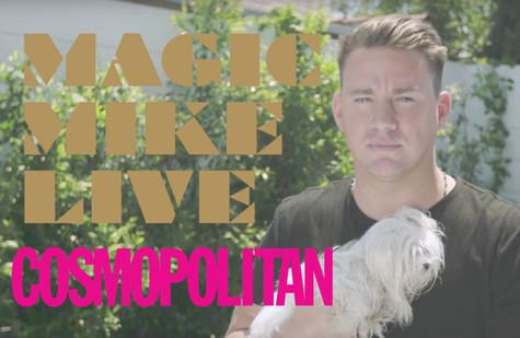 Magic Mike Live Announcement