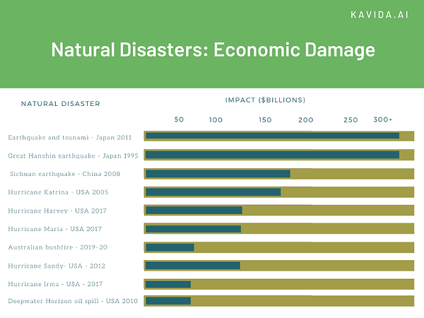 Natural Disasters Economic Cost.png