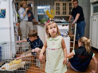 Third Birthday Party, 2003