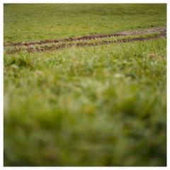 N41º46.370' W073º51.180' 10/17/04 403 ft.  (Tractor Tracks)