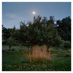 N41º08.877 W073º30.433' 6/26/18 379 ft. (Irwin Moon)