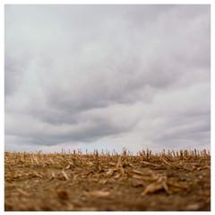 N41º46.427' W073º50.718' 10/10/04 432 ft.  (Parting in Clouds)