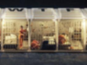Opioids_Prison_Board_WEB_edited.jpg