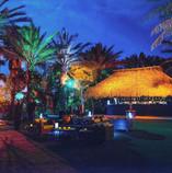 LinkedIn_Miami_Party_ Back Garden.jpg