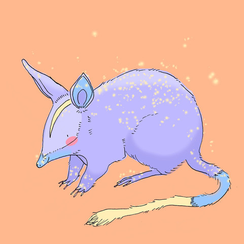 magic bilby.jpg