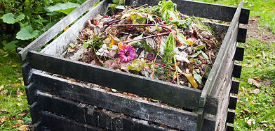 Picture-Organic-waste-1-1600x768.jpg