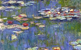water-lilies-40-945x584.jpeg