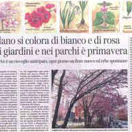 Corriere della Sera, 7 marzo 2015