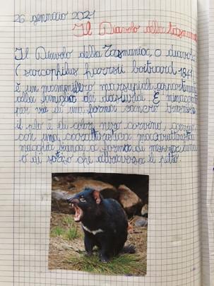 Leonardo, classe 4^, Lodi