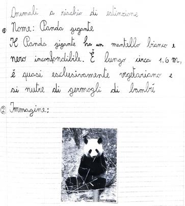 Niccolò, classe 4^, Lodi