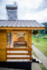 Dara's-Camping.jpg