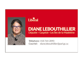 La ministre du Revenu national, Diane Le