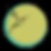 imagecerclecolibribriblue yellowB.png