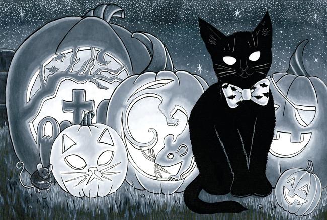 8.25x12.25 Pumpkin Patch Kitten .jpg