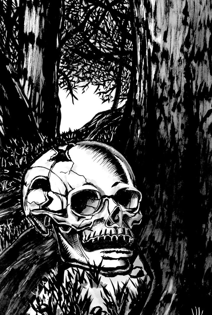 8.25x12.25 Skull.jpg