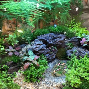 Biorb Nature Landscape Terrarium