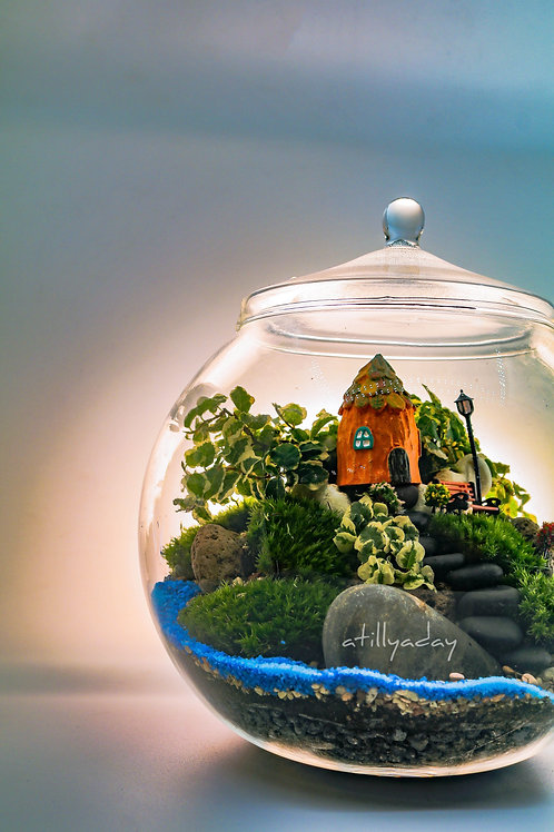 Customised Closed Terrarium A