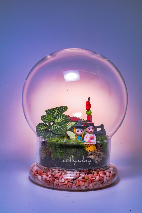 Customised Closed Terrarium D