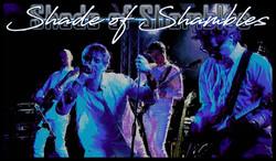 A- SHADE-BLUE-LIVE