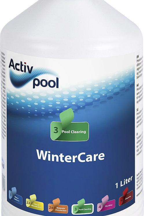 ActivPool WinterCare 1L